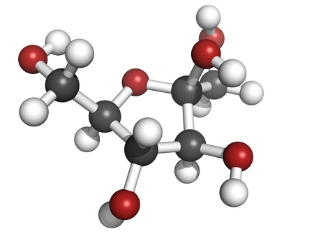 sucrose: Fructose fruit sugar molecule, chemical structure. Atoms are represented as spheres with conventional color coding: hydrogen (white), carbon (grey), oxygen (red)