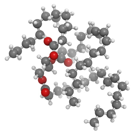 Saturated animal fat triglyceride molecule. These fat molecules are typically found in animal (butter, cheese, beef) fat. They are is composed of a glycerol molecule esterified with 3 saturated fatty acids. Atoms are represented as spheres with convention photo