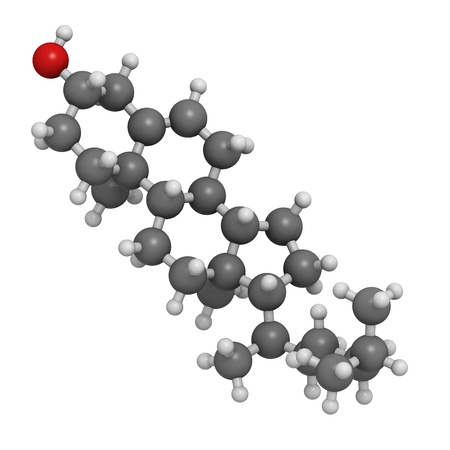 Cholesterol, molecular model. Atoms are represented as spheres with conventional color coding: hydrogen (white), carbon (grey), oxygen (red) Stock Photo - 18212862