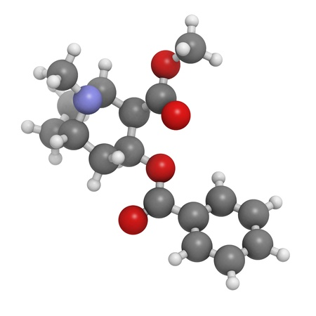 Cocaine drug, molecular model. Atoms are represented as spheres with conventional color coding: hydrogen (white), carbon (grey), oxygen (red), nitrogen (blue) Stock Photo - 18212842