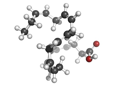 Omega-3 fatty acid docosahexaenoic acid, DHA, molecular model. Atoms are represented as spheres with conventional color coding: hydrogen (white), carbon (grey), oxygen (red) Stock Photo - 18212787