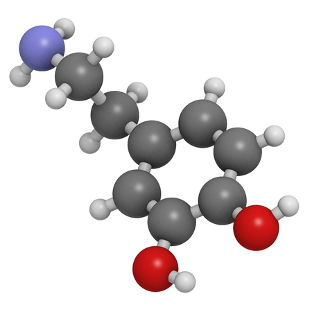 salience: Dopamine neurotransmitter molecule, chemical structure. Atoms are represented as spheres with conventional color coding: hydrogen (white), carbon (grey), oxygen (red), nitrogen (blue) Stock Photo