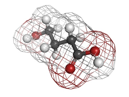 gamma-hydroxybutyric acid (GHB, liquid XTC) drug, molecular model. Atoms are represented as spheres with conventional color coding: hydrogen (white), carbon (grey), oxygen (red) Stock Photo - 18212936