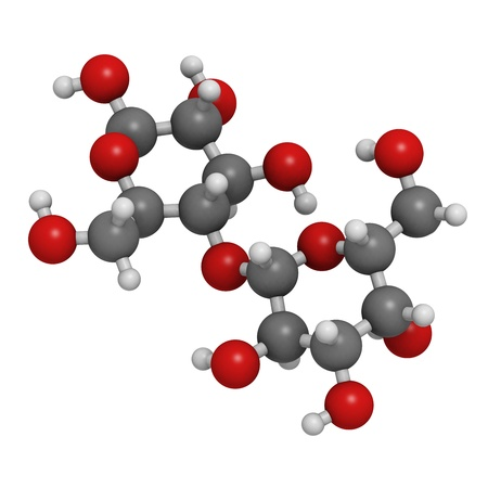 Lactose milk sugar molecule, chemical structure. Lactose is the disaccharide sugar found in milk. Atoms are represented as spheres with conventional color coding: hydrogen (white), carbon (grey), oxygen (red) Stock Photo - 18212867