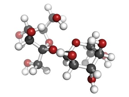 disaccharide: Sugar (sucrose, saccharose) molecule, chemical structure. Atoms are represented as spheres with conventional color coding: hydrogen (white), carbon (grey), oxygen (red)