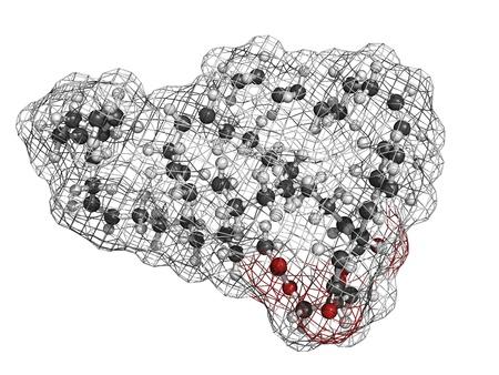 triglycerides: Vegetable mol�cula aceite de triglic�rido insaturado, estructura qu�mica. Triglic�ridos insaturados como �sta a menudo se encuentran en el aceite de oliva y otros aceites vegetales. Los �tomos se representan como esferas con codificaci�n de colores convencionales: hidr�geno (blanco), carb�n (