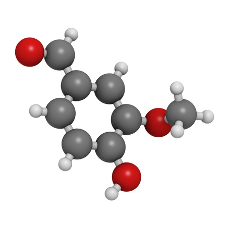 Vanillin vanilla extract molecule, chemical structure  Vanillin is the main component of vanilla extract  Atoms are represented as spheres with conventional color coding  hydrogen  white , carbon  grey , oxygen  red Stock Photo - 18212824