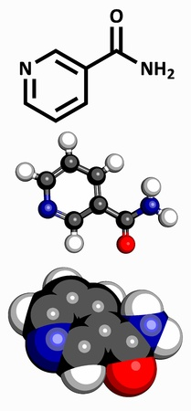 amide: Vitamin B3  niacinamide, nicotinic acid amide , molecular model  Atoms are represented as spheres with conventional color coding  hydrogen  white , carbon  grey , oxygen  red  Illustration