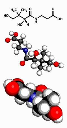 deficiency: Vitamin B5  pantothenic acid , molecular model  Atoms are represented as spheres with conventional color coding  hydrogen  white , carbon  grey , oxygen  red , nitrogen  blue