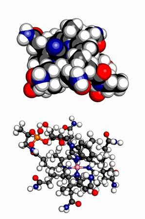 pernicious: La vitamina B12 cianocobalamina, Atoms moleculares modelo se representan como esferas con color convencional de codificaci�n hidr�geno blanco, gris carb�n, ox�geno rojo, amarillo azufre, cobalto rosa, azul nitr�geno Vectores