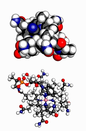 Vitamin B12  cyanocobalamin , molecular model  Atoms are represented as spheres with conventional color coding  hydrogen  white , carbon  grey , oxygen  red , sulfur  yellow , cobalt  pink , nitrogen  blue  向量圖像
