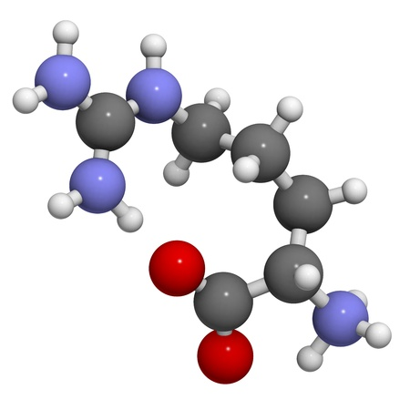 biosynthesis: Arginine (Arg, R) amino acid, molecular model. Amino acids are the building blocks of all proteins.