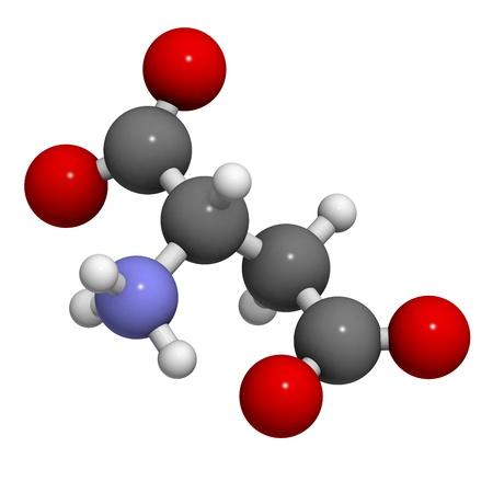biosynthesis: Aspartic acid (Asp, D, aspartate) amino acid, molecular model. Amino acids are the building blocks of all proteins.