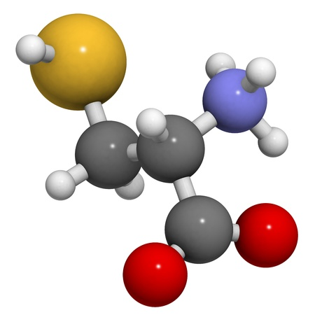 biosynthesis: Cysteine (Cys, C) amino acid, molecular model. Amino acids are the building blocks of all proteins.  Stock Photo