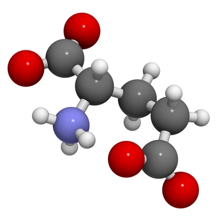 glutamate: Glutamic acid (Glu, E, glutamate) amino acid and neurotransmitter, molecular model.   Stock Photo