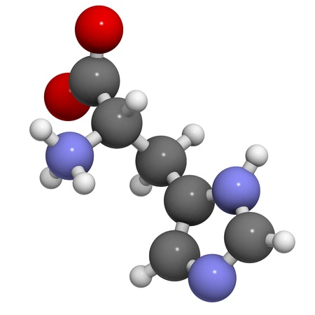 Histidine (His, H) amino acid, molecular model. Amino acids are the building blocks of all proteins.