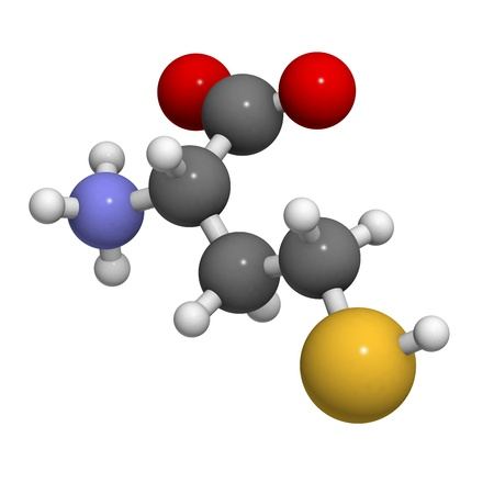 Homocysteine (Hcy) amino acid, molecular model. Elevated blood homocysteine levels are associated with cardiovascular disease.  photo