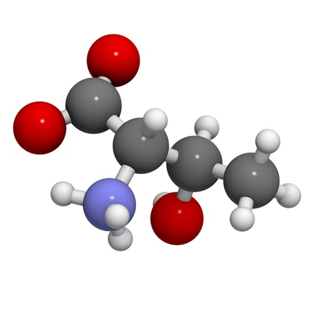 Threonine (Thr, T) amino acid, molecular model. Amino acids are the building blocks of all proteins. Atoms are represented as spheres with conventional color coding: hydrogen (white), carbon (grey), oxygen (red), nitrogen (blue) photo