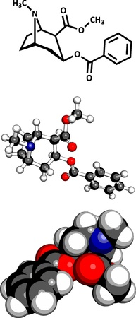 sniffing: Cocaine drug, molecular model. Three representations: 2D skeletal formula, 3D space-filling model and 3D ball-and-stick model.