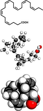 Omega-3 fatty acid docosahexaenoic acid, DHA, molecular model. Three representations: 2D skeletal formula, 3D space-filling model and 3D ball-and-stick model. Stock Vector - 18409327