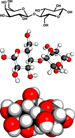 disaccharide: Lactose milk sugar molecule, chemical structure. Lactose is the disaccharide sugar found in milk. Three representations: 2D skeletal formula, 3D space-filling model and 3D ball-and-stick model.   Illustration