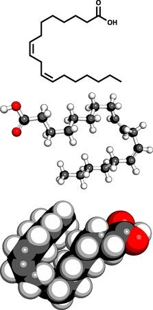 representations: Omega-6 �cidos grasos insaturados (�cido linoleico, LA), modelo molecular. Tres representaciones 2D: F�rmula del esqueleto, modelo 3D llenado de espacio y modelo 3D de bola y palo. Vectores