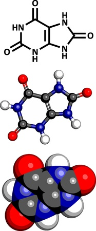 Uric acid gout molecule, chemical structure. High blood levels of uric acid cause the disease gout. Three representations: 2D skeletal formula, 3D space-filling model and 3D ball-and-stick model.
