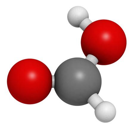 formic: �cido f�rmico picadura de hormigas qu�mico, modelo molecular. Los �tomos se representan como esferas con codificaci�n de color convencionales: hidr�geno (blanco), carbono (gris), ox�geno (rojo) Foto de archivo