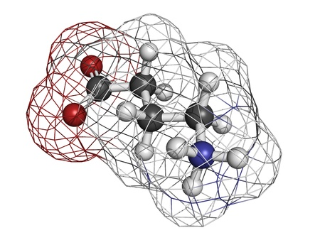 benzodiazepine: gamma-aminobutyric (GABA) neurotransmitter, molecular model. Atoms are represented as spheres with conventional color coding: hydrogen (white), carbon (grey), oxygen (red), nitrogen (blue)