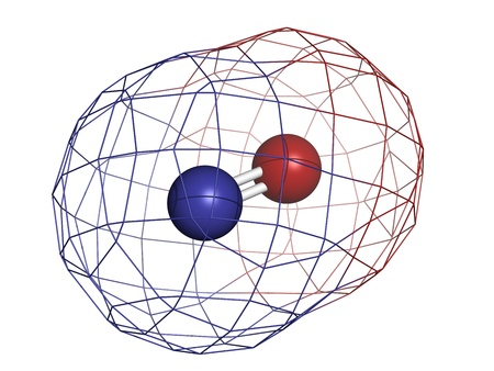 Nitric oxide (NO) free radical and signaling molecule, molecular model. It is also known as the endothelium-derived relaxing factor (EDRF). Atoms are represented as spheres with conventional color coding: oxygen (red), nitrogen (blue) Stock Photo