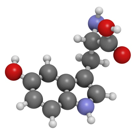 antidepressant: 5-hydroxytryptophan (5-HTP, oxitriptan) antidepressant, molecular model. 5-HTP is used as an antidepressant, sleep aid and appetite suppressant. Atoms are represented as spheres with conventional color coding: hydrogen (white), carbon (grey), oxygen (red)