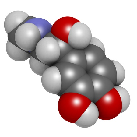 Adrenaline (epinephrine) hormone and neurotransmitter, molecular model. Atoms are represented as spheres with conventional color coding: hydrogen (white), carbon (grey), oxygen (red), nitrogen (blue) 版權商用圖片