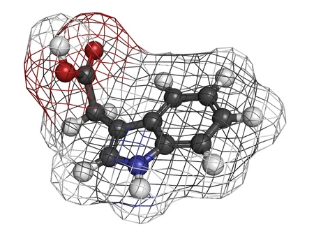 phytohormone: Auxin (indole-3-acetic acid, IAA) plant growth hormone, molecular model. Atoms are represented as spheres with conventional color coding: hydrogen (white), carbon (grey), oxygen (red), nitrogen (blue).