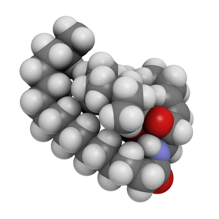 membrane: Ceramide cell membrane lipid, molecular model. Atoms are represented as spheres with conventional color coding: hydrogen (white), carbon (grey), oxygen (red), nitrogen (blue). Stock Photo
