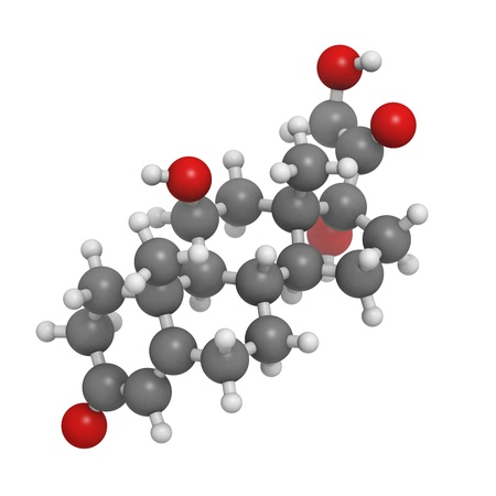 pituitary: Cortisol (hydrocortisone) stress hormone, molecular model. Atoms are represented as spheres with conventional color coding: hydrogen (white), carbon (grey), oxygen (red)