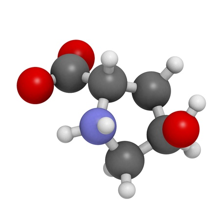 Hydroxyproline (Hyp) collagen building block, molecular model. Atoms are represented as spheres with conventional color coding: hydrogen (white), carbon (grey), oxygen (red), nitrogen (blue)