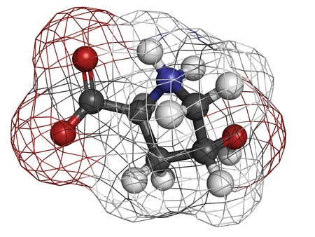 Hydroxyproline (Hyp) collagen building block, molecular model. Atoms are represented as spheres with conventional color coding: hydrogen (white), carbon (grey), oxygen (red), nitrogen (blue) Stock Photo - 18805957