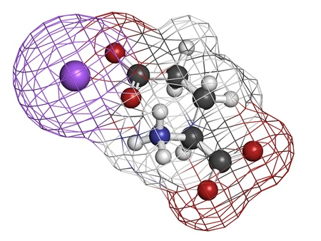 glutamate: Sodium glutamate (umami flavor), molecular model. Atoms are represented as spheres with conventional color coding: hydrogen (white), carbon (grey), oxygen (red), nitrogen (blue), sodium (purple).