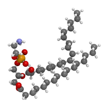 cell membrane: Palmitoyloleoylphosphatidylethanolamine (POPE) cell membrane building block, molecular model. PE is also important in blood clotting (coagulation). Atoms are represented as spheres with conventional color coding: hydrogen (white), carbon (grey), oxygen (r Stock Photo