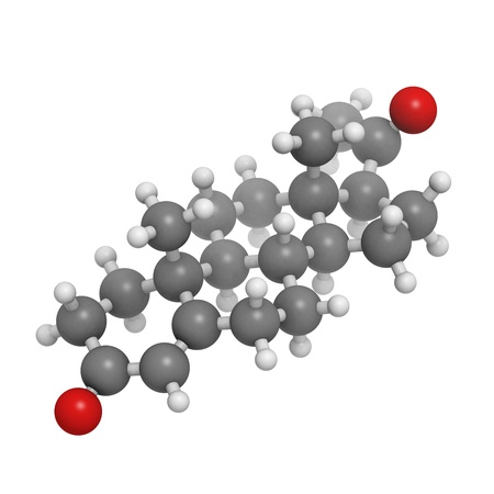 Progesterone female sex hormone, molecular model. Atoms are represented as spheres with conventional color coding: hydrogen (white), carbon (grey), oxygen (red) photo