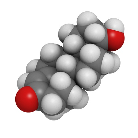 Testosterone male sex hormone, molecular model. Atoms are represented as spheres with conventional color coding: hydrogen (white), carbon (grey), oxygen (red) Stock Photo - 18805993