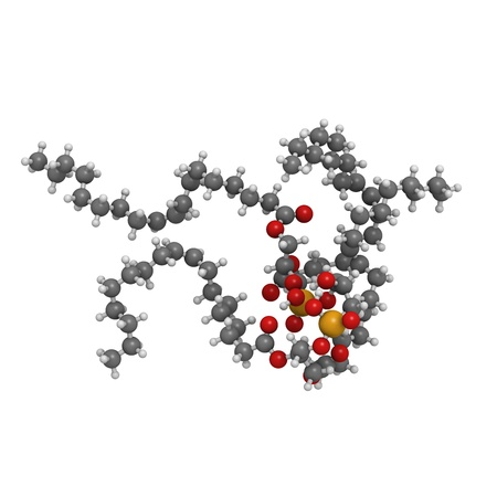 anticoagulant: Cardiolipin (tetraoleoylcardiolipin) mitochondrial membrane lipid, molecular model. Atoms are represented as spheres with conventional color coding: hydrogen (white), carbon (grey), oxygen (red), phosphorus (orange)