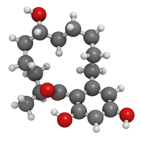 agonist: Zeranol beef growth promoter, molecular model. Zeranol has non-steroidal estrogen agonist properties. Atoms are represented as spheres with conventional color coding: hydrogen (white), carbon (grey), oxygen (red)