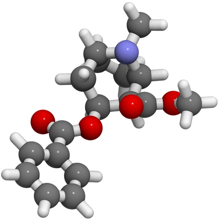 Cocaine drug, molecular model. Atoms are represented as spheres with conventional color coding: hydrogen (white), carbon (grey), oxygen (red), nitrogen (blue)