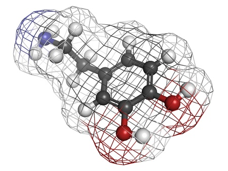 neurotransmitter: Dopamine neurotransmitter molecule, chemical structure. Atoms are represented as spheres with conventional color coding: hydrogen (white), carbon (grey), oxygen (red), nitrogen (blue) Stock Photo