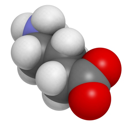 neurotransmitter: gamma-aminobutyric (GABA) neurotransmitter, molecular model. Atoms are represented as spheres with conventional color coding: hydrogen (white), carbon (grey), oxygen (red), nitrogen (blue)