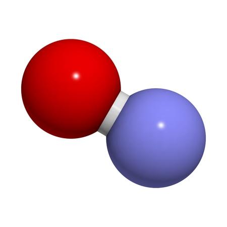signalering: Stikstofoxide (NO) vrije radicalen en signalerende molecule, moleculair model. Het is ook bekend als de endothelium-derived relaxing factor (EDRF). Atomen worden weergegeven als bollen met conventionele kleurcodering: zuurstof (rood), stikstof (blauw)