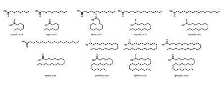 Saturated fatty acids (set): caprylic, acid, capric, lauric, myristic, palmitic, stearic, arachidic, behenic and lignoceric acid.