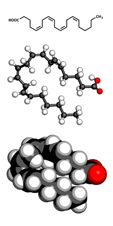 dag: Arachidonic acid (AA, ARA) polyunsaturated omega-6 fatty acid, molecular model. Atoms are represented as spheres with conventional color coding: hydrogen (white), carbon (grey), oxygen (red)