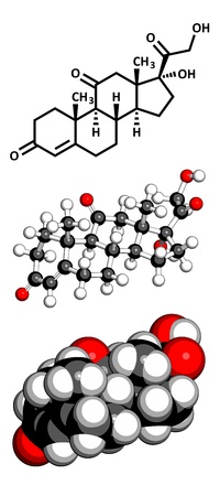 sugar metabolism: cortisone stress hormone, molecular model. Atoms are represented as spheres with conventional color coding: hydrogen (white), carbon (grey), oxygen (red)